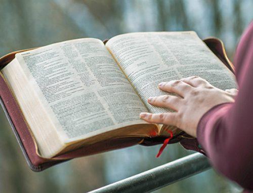1. Las Sagradas Escrituras