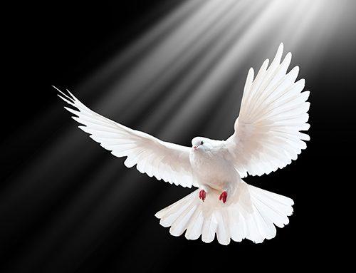 4. Espíritu Santo